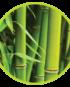 bambus-odorizant-profesional