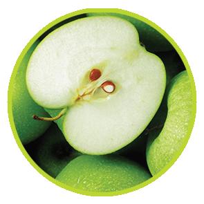 Rezerva Odorizant Mar Verde ⋆ Columbia Fresh ⋆ Odorizante Profesionale ⋆ Sistem Odorizare ⋆ Sistem Parfumare ⋆ Odorizant Camera ⋆ Odorizant Bubble Gum