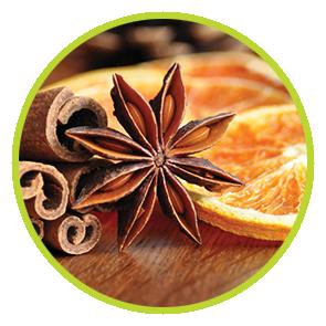 Rezerva Odorizant Portocale si Scortisoara ⋆ Columbia Fresh ⋆ Odorizante Profesionale ⋆ Sistem Odorizare ⋆ Sistem Parfumare ⋆ Odorizante pentru Birou