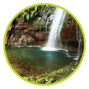 Rezervă odorizant Racas ⋆ Columbia Fresh ⋆ Odorizante Profesionale ⋆ Sistem Odorizare ⋆ Sistem Parfumare ⋆ Odorizant Camera ⋆ Odorizant Bubble Gum